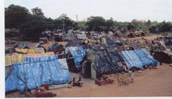 Slum Overview